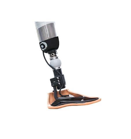 Bacak Protezleri